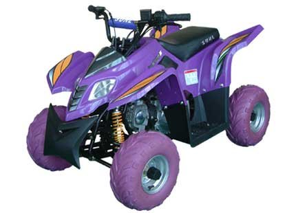 100cc 4 Wheeler(display models only)